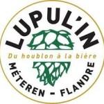 Festival Lupul'in